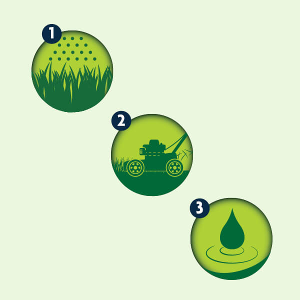 Illustration showing icons in steps with Fertilizer first then cutting grass then water