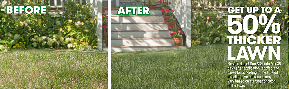 Comparison between a thicker lawn and a lawn without the fertilizer with caption- get up to a fifty percent thicker lawn