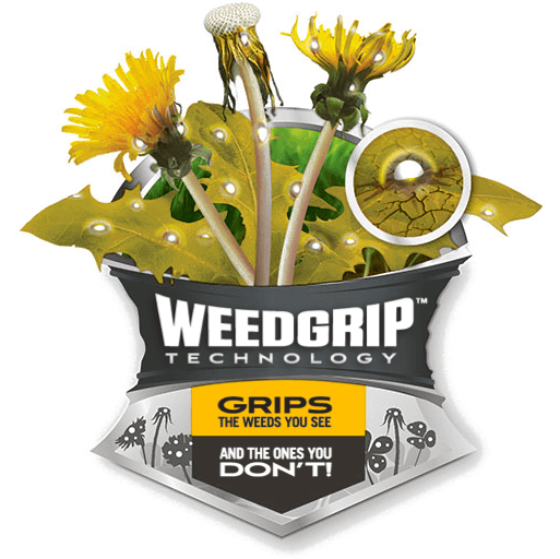 Illustration of WeedGrip sticking to Dandelion Weeds with Caption - WeedGrip Technology Kills the Weeds You See and the Ones You Don't