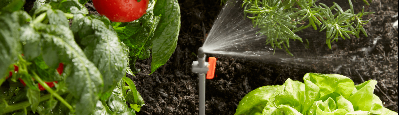 Gro™ Watering Solutions