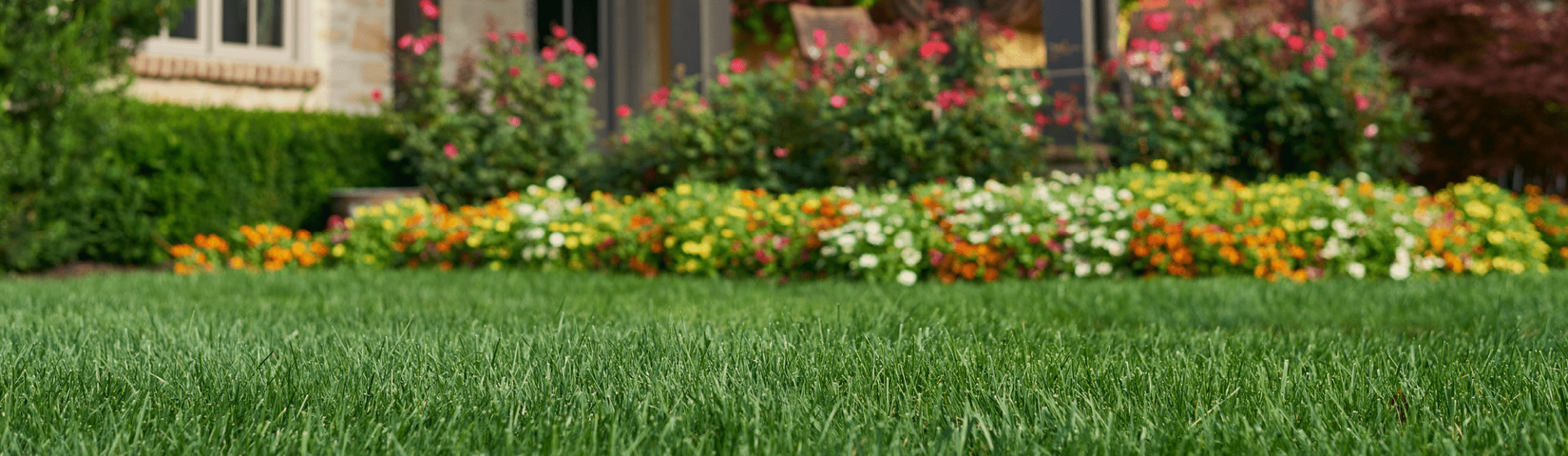 Soil & Mulch For Lawn and Garden