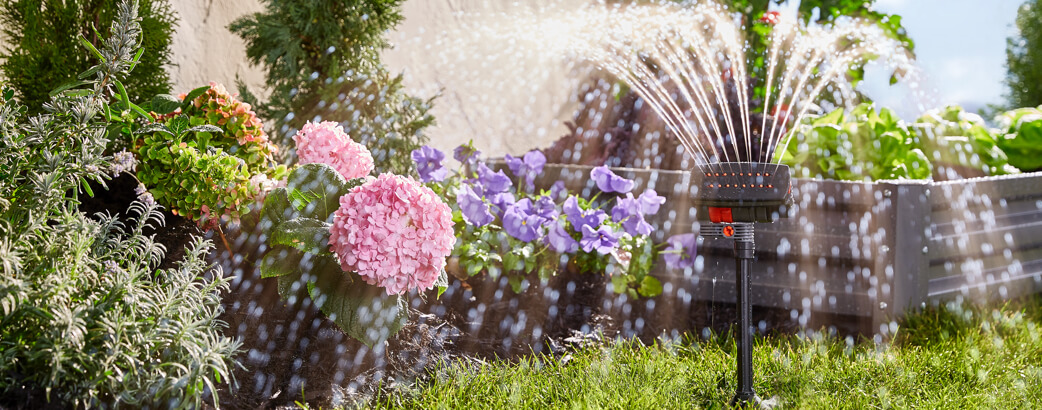 Beautiful lawn and garden with sprinkler.