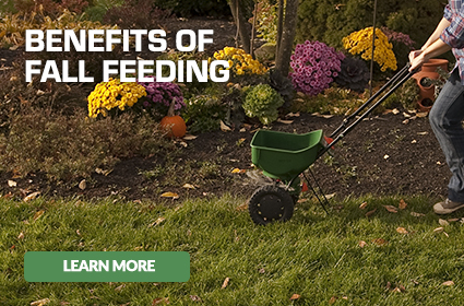 Lawn spreader being pushed with caption - Benefits of Fall Feeding