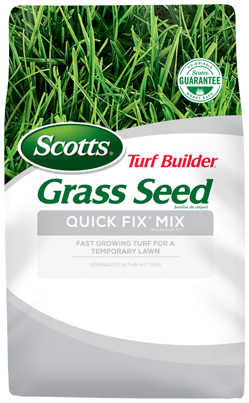 fast growing grass seed quick fix mix scotts turf builder