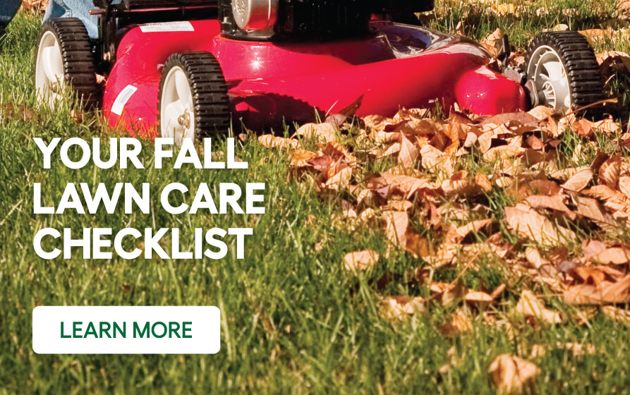 Lawn mower cutting grass with caption- your fall lawn care checklist