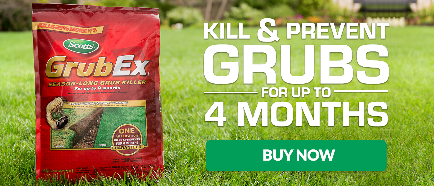 Kill & Prevent Grubs For Up To 4 Months