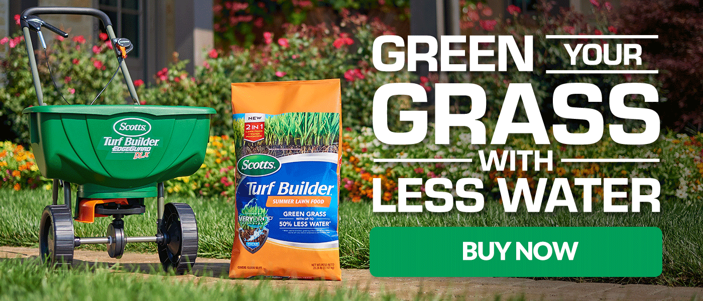 Green Your Grass With Less Water