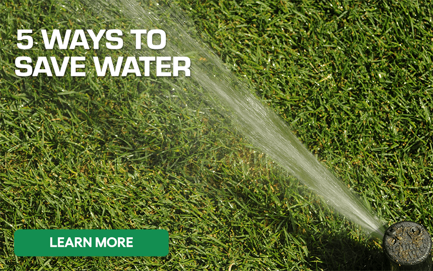 Five Ways to Save Water - Learn More