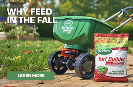 Scotts spreader and bag of Scotts Winterguard Fall Lawn Food with cation - Why Feed in the Fall