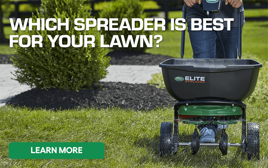 Which Spreader is Best for Your Lawn - Learn More