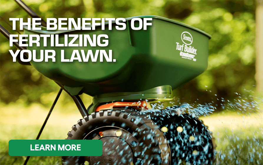 Learn the benefits of fertilizing your lawn - Learn More