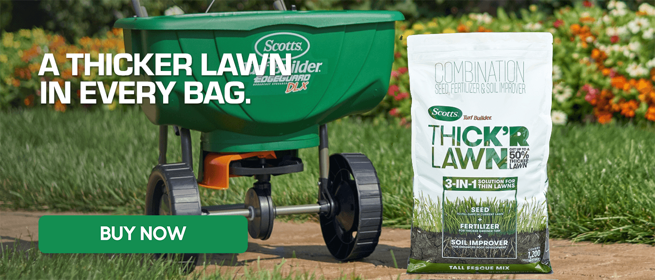 Thick R Lawn - Tall Fescue - A Thicker Lawn in Every Bag