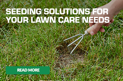 Seeding Solutions For Your Lawn Care Needs