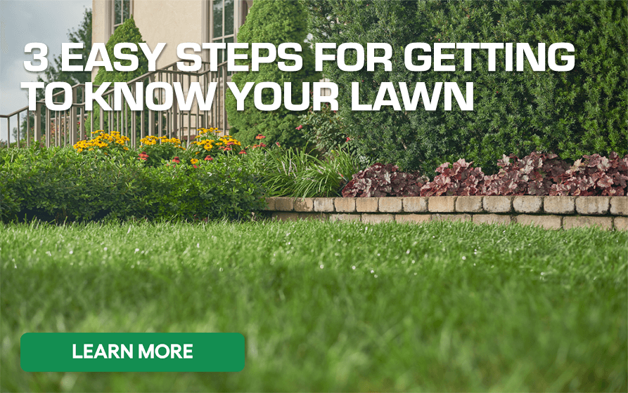 3 Easy Steps for Getting to Know Your Lawn