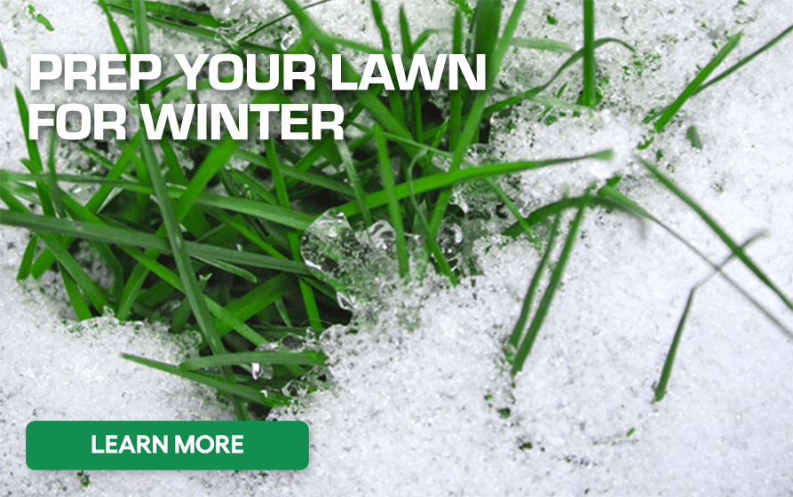 Prep Your Lawn for Winter - Read More