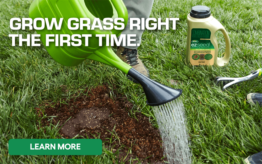 Grow Grass Right The First Time - Learn More