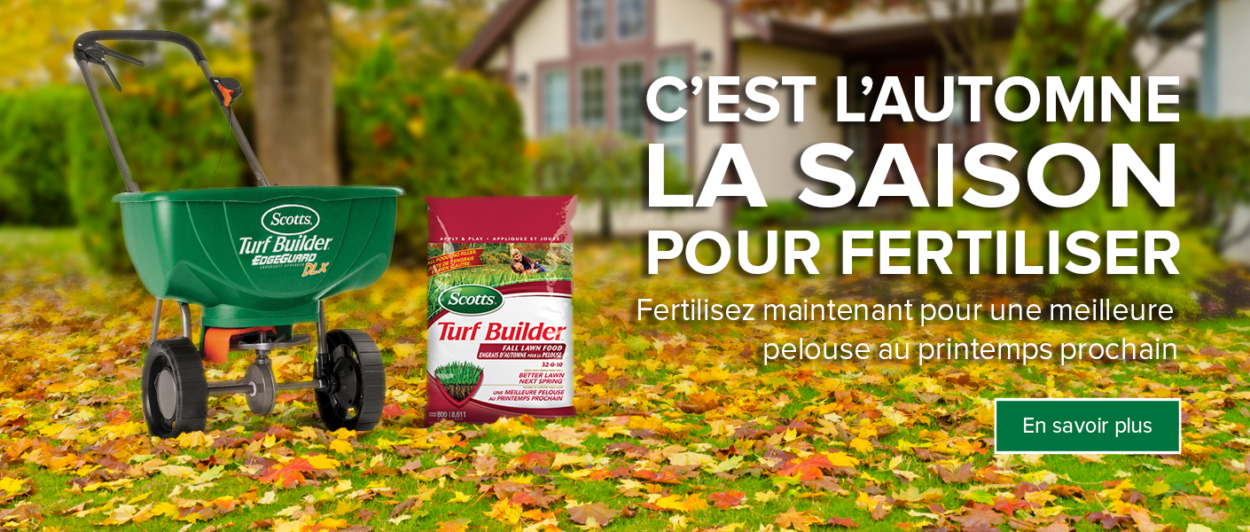 Spreader with lawn products on yard covered in autumn leaves