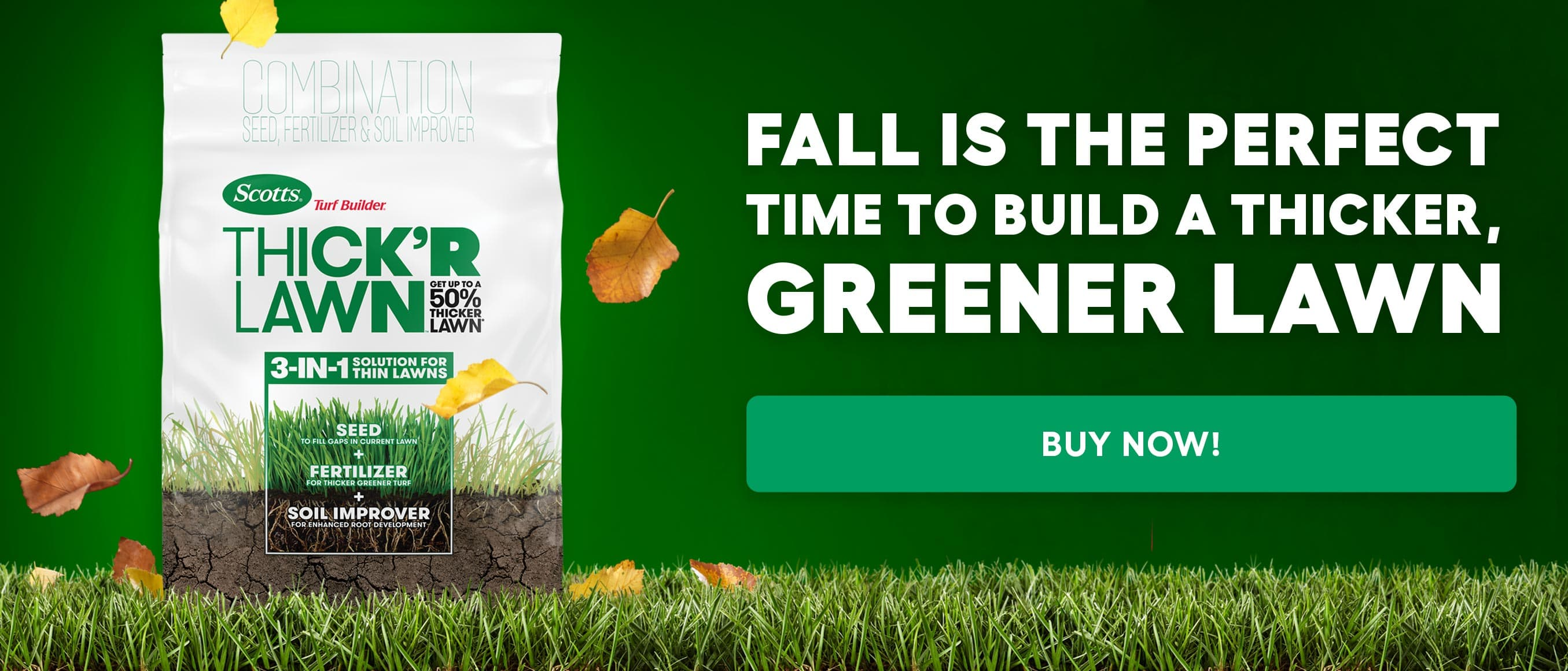 Fall is the perfect time to build a thicker, greener lawn