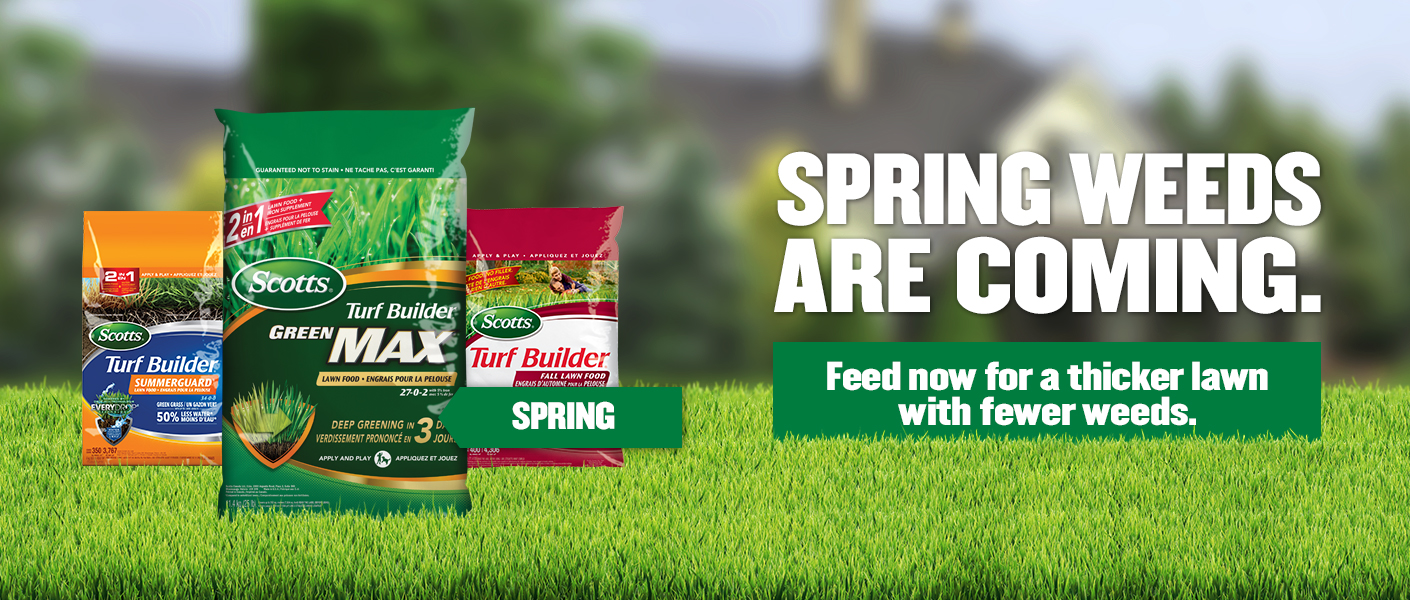 3Feed English banner featuring three products