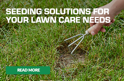 scotts seeding solutions for your lawn care needs