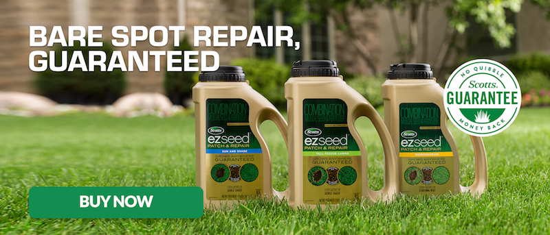 scotts ez seed repair your bare spots