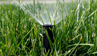 Close-up of sprinkler watering grass