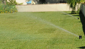 How To Prevent Lawn Amp Grass Diseases Seasonal Scotts