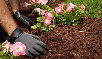 How to Kill Weeds Naturally - Mulch - Scotts