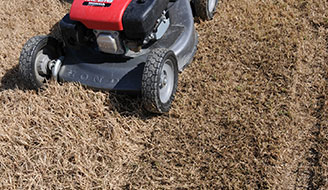Prepare Lawn For Winter how to seed a dormant lawn in winter - scotts
