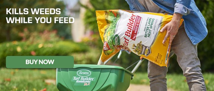 Kill Weeds While You Feed with Scotts Turf Builder Winterguard Weed and Feed