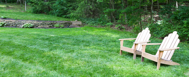 chairs on healthy lawn