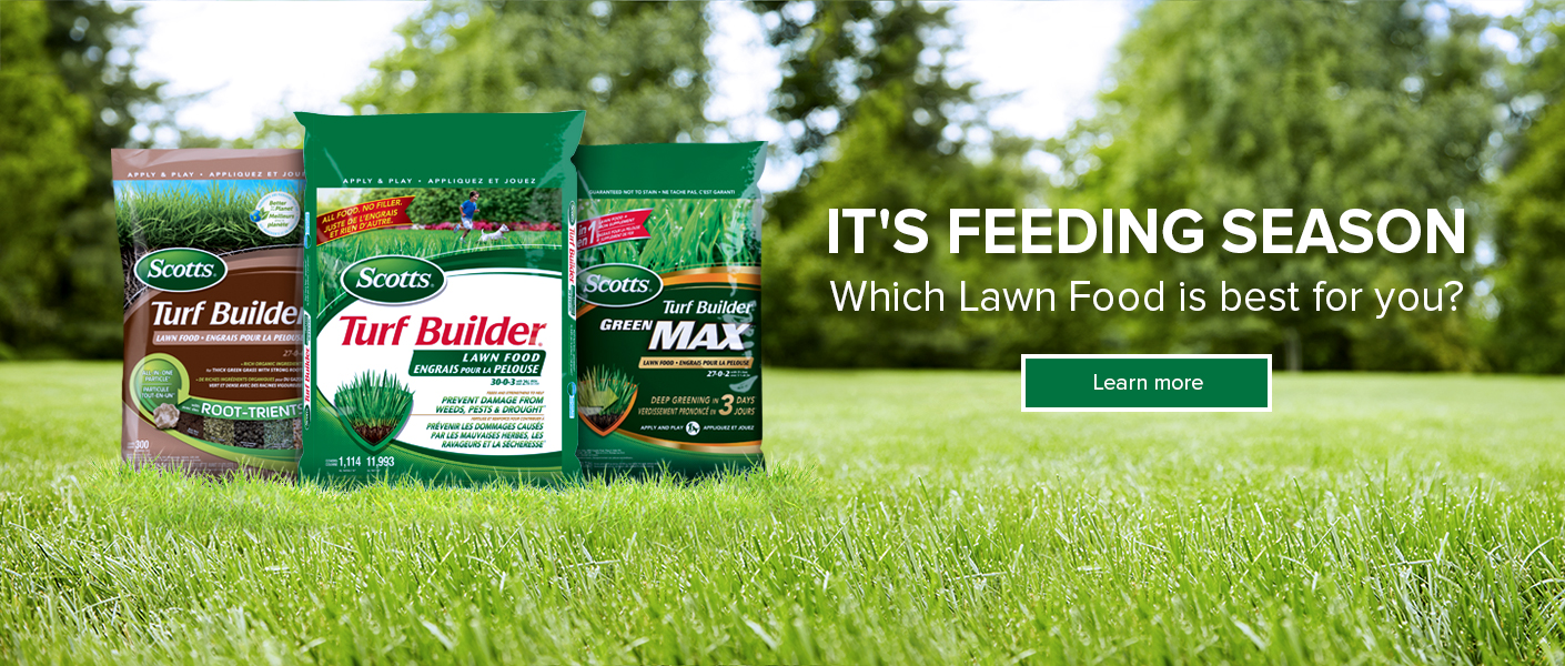 It's Feeding Season. Which lawn food is best for you.