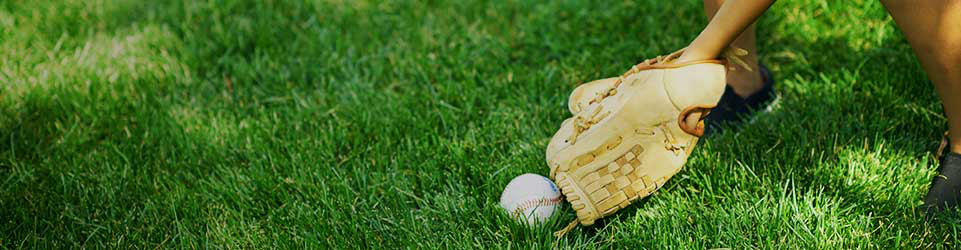 Person catching a ball with baseball glove on green grass
