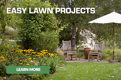 Get easy lawn projects