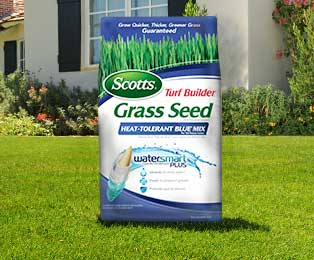 Grass Seed Selector