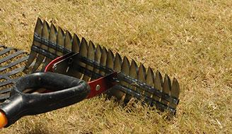 Raking Lawn - How to Aerate & Dethatch Your Lawn