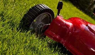 Best Ways to Grow Newly Planted Grass - Lawn Mower in Grass