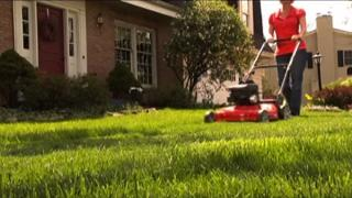 Mower in Use in Lawn