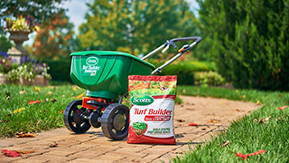 Fall lawn fertilizer next to a Scotts spreader on a brick path.