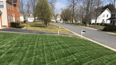 Latest News About Lawn Mowing