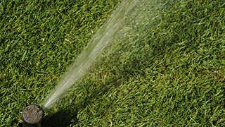 Best Practices with a Sprinkler System