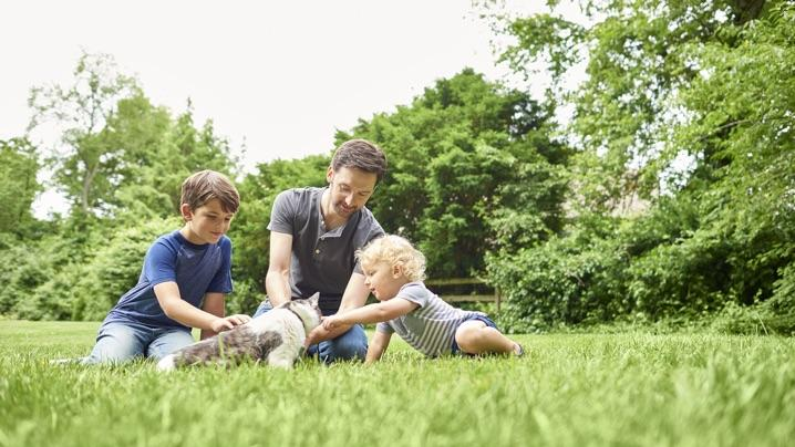 Lawn Benefits: Family playing on lawn with cat