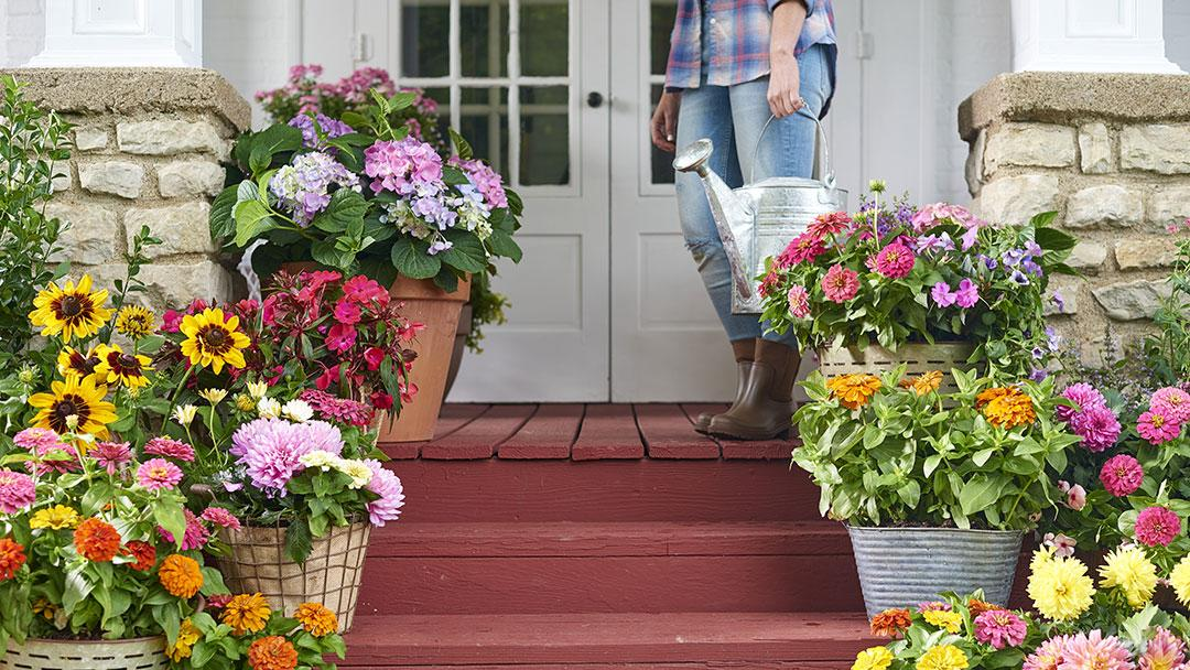 landscape ideas to improve curb appeal scotts
