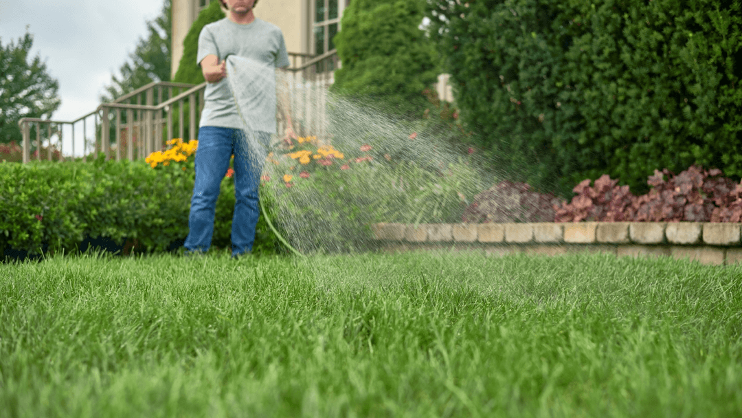 Follow These 6 Secret Tips For The Best Looking Yard On Block