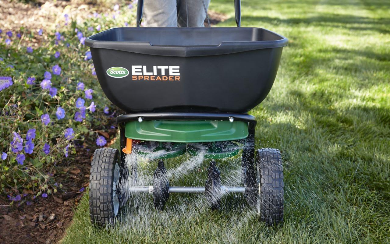 The How Why And When To Overseed Your Lawn