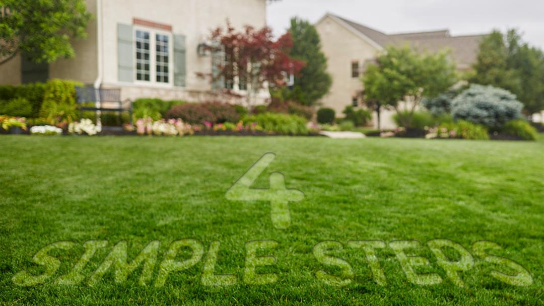 4 Simple Steps to a Greener Lawn