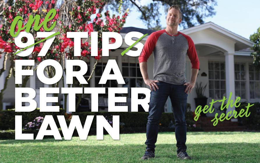 One tip for a better lawn: man standing on lawn in front of house, looking proud