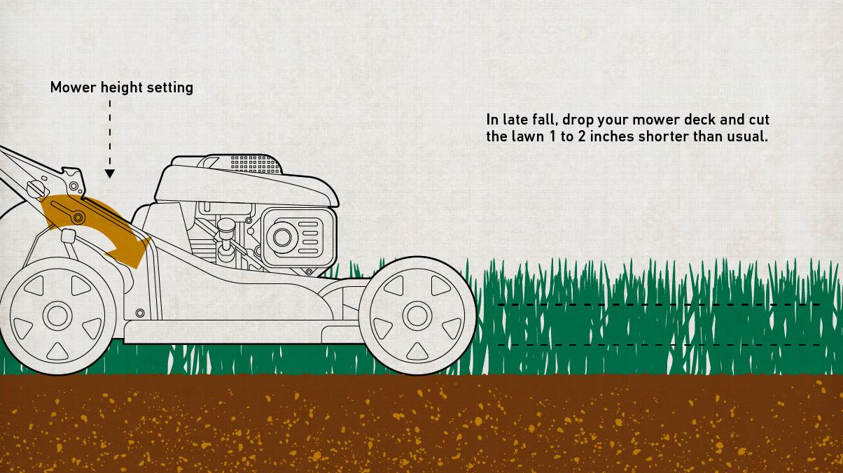 Illustration displaying how to properly set a lawnmowers blade height. 1 to 2 inches shorted in the Fall is suggested.