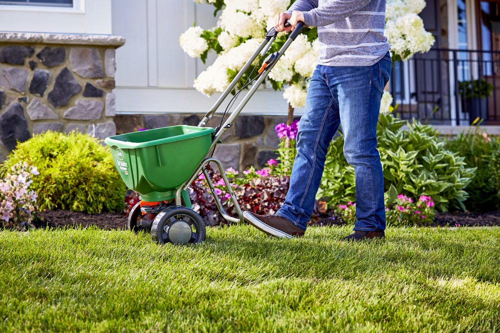 Seasonal Lawn Care Guide For Lush Lawns - Scotts