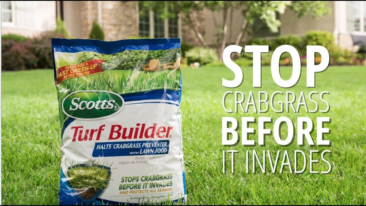 Scotts Turf Builder Before And After